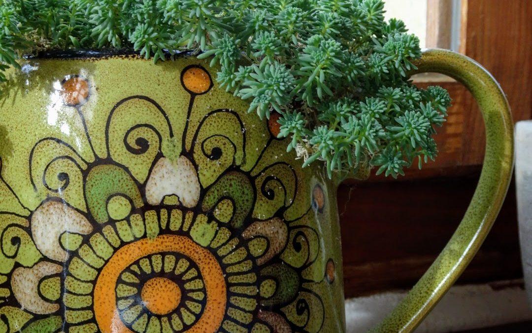 Indoor gardening, or welcome to Gardening Bore 2021